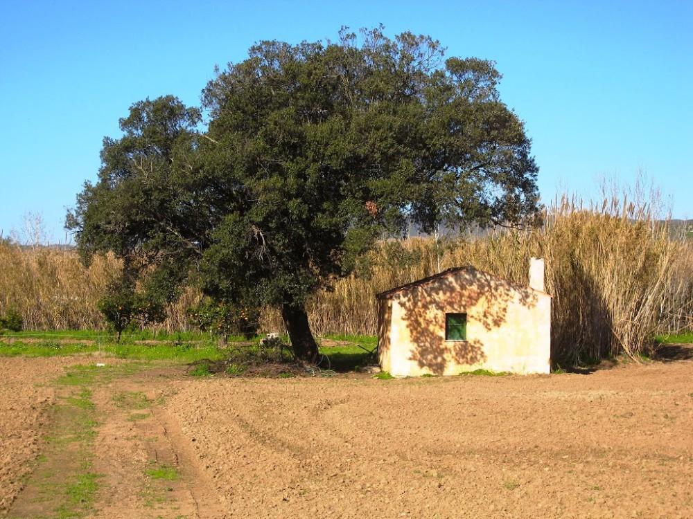 SardiniaSant27AnnaArresi.jpgimgmax1024
