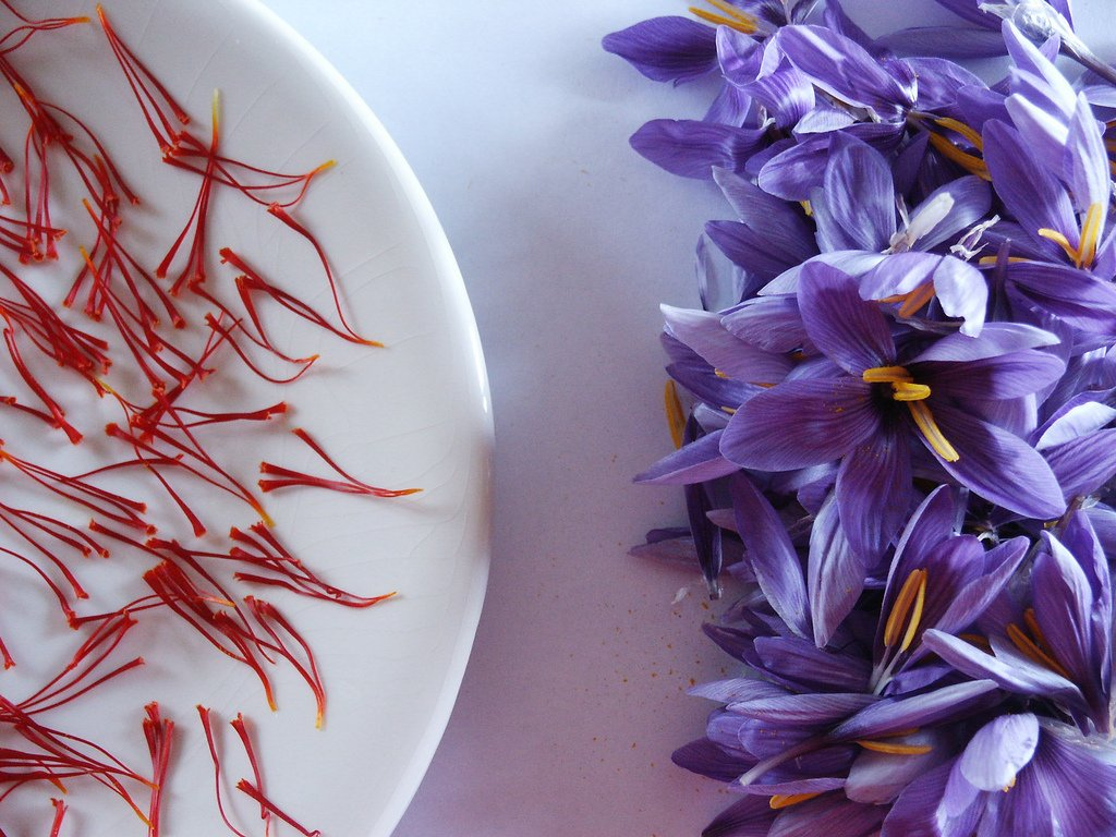 SAFFRON - THE SPICE BEYOND PRICE
